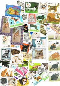 100 different dogs and cats packet